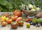 Choisir ses plats au restaurant en été  - Tomates, navets et autres légumes
