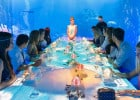 Combien coûte le menu le plus cher au monde ?  - Sublimotion de Paco Roncero à Ibiza