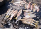 Un bon restaurant de poissons et fruits de mer  - Grillade de poissons en plein air