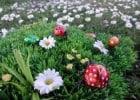 Venez à la chasse aux oeufs de Pâques chez Flunch  - Chasse aux oeufs à Pâques