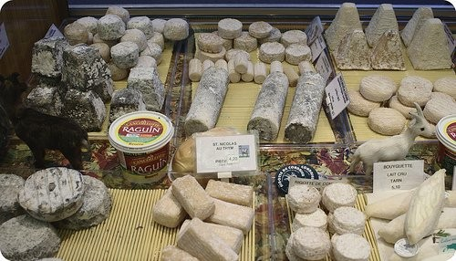 Assortiment de fromages de chèvre