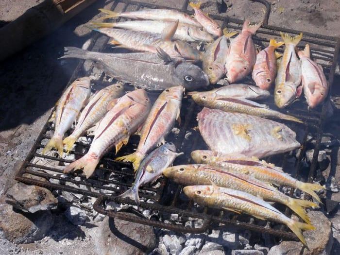 Grillade de poissons en plein air