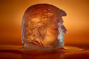 Des glaçons à l'image de Donald Trump pour la bonne cause