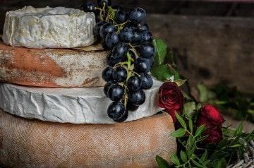 Etre payé pour tester des fromages, ça vous dit ?