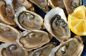 L'île de Ré possède son distributeur automatique d'huîtres