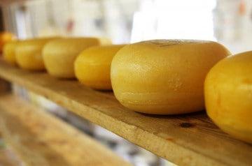Le fromage, la star d'un parc à thème coréen