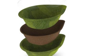 Les assiettes vertes, les assiettes du futur pour manger