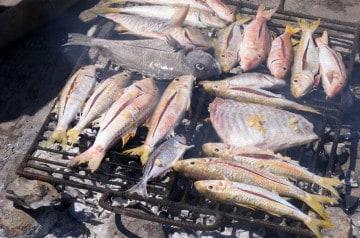 Un bon restaurant de poissons et fruits de mer