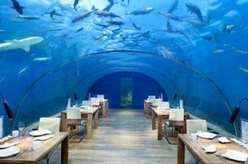 Un restaurant sous la mer