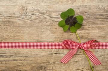 Un trèfle vert décerné aux restaurants durables par Michelin