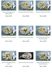 Menu Toinou - Les huîtres