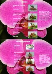 Menu L' Orchidée - Les salades et accompagnements