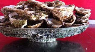 Chez petit pierre - Des huîtres