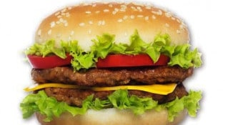 Hector Chicken - Le big burger